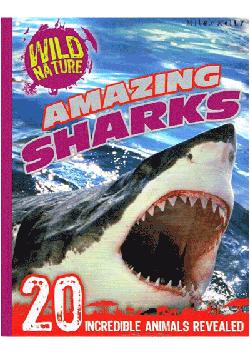 Wild Nature Amazing Sharks