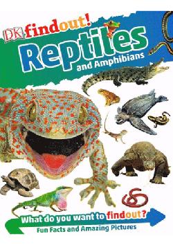 DK Findout - Reptiles