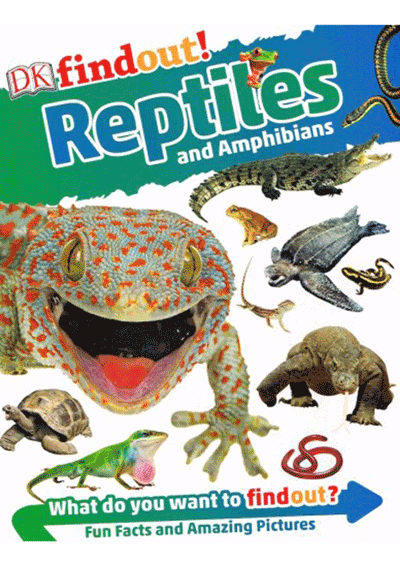 DK Findout - Reptiles Cover
