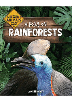 A Focus on Rainforests