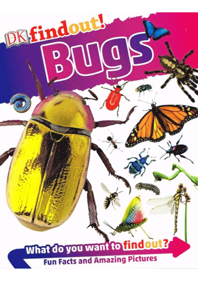 DK Findout - Bugs Cover
